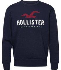 hco. guys sweatshirts sweat-shirt tröja blå hollister