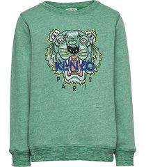 tiger jb 5 sweat-shirt trui groen kenzo