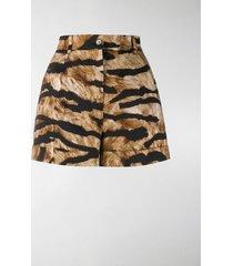 dolce & gabbana tiger print shorts