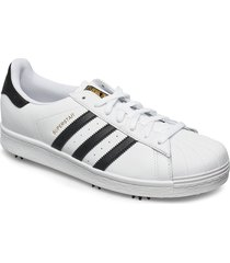 adidas golf superstar shoes sport shoes training shoes- golf/tennis/fitness vit adidas golf