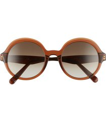 salvatore ferragamo salvatore ferragam gancini 52mm round sunglasses in crystal brown/khaki gradient at nordstrom