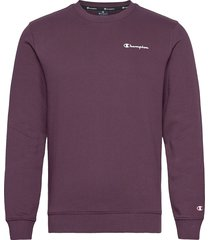 crewneck sweatshirt sweat-shirt tröja lila champion