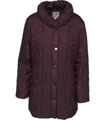 windffield jacket burgundy