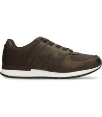 tenis casuales café north star viterbo r hombre