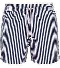pantaloneta azul steam rayas ocean stripes