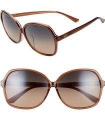 women's maui jim taro 59mm polarizedplus2 round sunglasses - caramel w/ pink/ hcl bronze