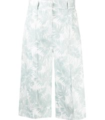 hebe studio the printed cotton teal bermuda - white