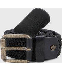 cinturón negro tannino