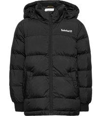 puffer jacket gevoerd jack zwart timberland