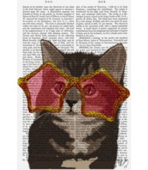 "fab funky kitten in star sunglasses canvas art - 15.5"" x 21"""