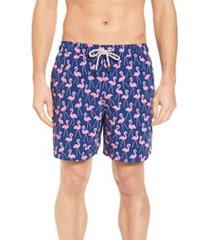 men's tom & teddy flamingo print swim trunks, size large - blue