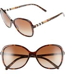 women's burberry 58mm sunglasses - dark tortoise