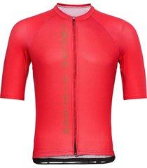 jersey s/s elite men t-shirts short-sleeved rosa twelve sixteen