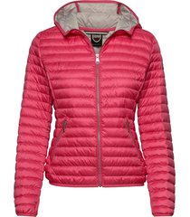 ladies light down jacket gevoerd jack roze colmar