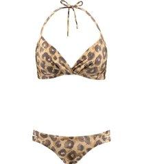 bikini bruin