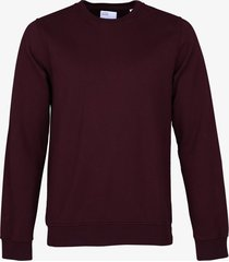 colourful standard pullover - slim fit - bord