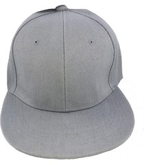 gorra gris fight for your right gaviota visera plana gabardina