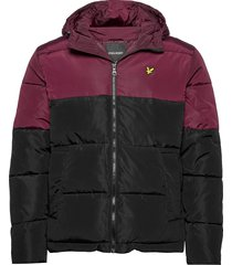colourblock puffer jacket gevoerd jack multi/patroon lyle & scott