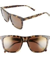 women's maui jim velzyland 56mm polarizedplus2 square sunglasses - olive tortoise/ hcl bronze