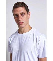 camiseta pima basic armadillo masculina - masculino