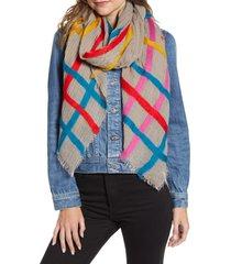 women's echo felted stripe scarf