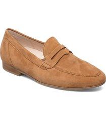 sport trotteur loafers låga skor brun gabor