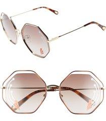 women's chloe poppy 58mm octagonal halo lens sunglasses - havana/ gold brown w print