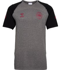dbu player pro seamless jersey s/s t-shirts football shirts grå hummel