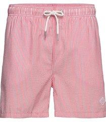 seersucker swim shorts cf badshorts rosa gant
