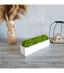 doniczka drewniana z chrobotkiem 30 cm, biała
