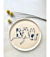 talerz kotki