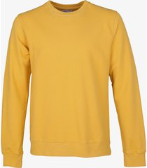 colourful standard pullover - slim fit - geel