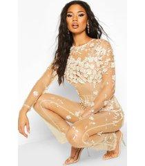 floral applique mesh jumpsuit, champagne