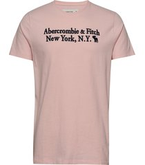 core heritage logo t-shirts short-sleeved rosa abercrombie & fitch