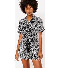 loft animal spotted pajama shorts