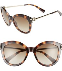 longchamp 55mm cat eye sunglasses in havana at nordstrom