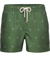 giraffe swim shorts badshorts grön oas