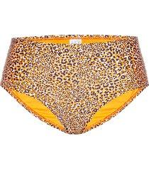 wide side retro bikinitrosa gul seafolly