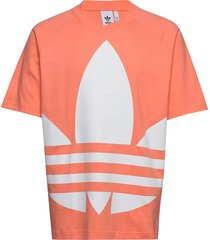 bg trefoil tee t-shirts short-sleeved adidas originals
