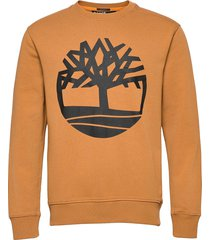 core logo crew bb sweat-shirt tröja orange timberland