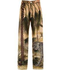 jaguar in the oasis pants