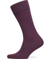 tl cashmere rs underwear socks regular socks lila boss business wear