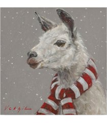 """mary miller veazie 'llama with red and white scarf' canvas art - 14"""" x 14"""""""