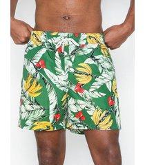 polo ralph lauren traveler swim shorts badkläder green