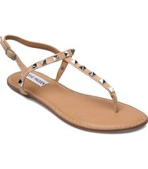 generate sandal shoes summer shoes flat sandals beige steve madden