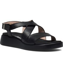c-6505 willer shoes summer shoes flat sandals svart wonders
