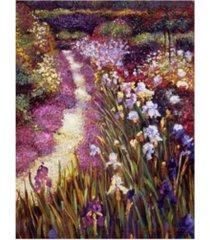 "david lloyd glover iris garden path canvas art - 37"" x 49"""
