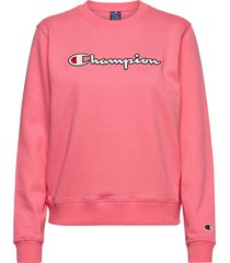 crewneck sweatshirt sweat-shirt trui roze champion