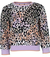 multicolor suzanna crewneck pullover