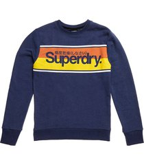 sweater logo stripe donkerblauw